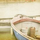 Boats at Brixham by Lissywitch