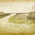 Lynmouth harbour by Lissywitch