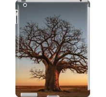 Farewell to the Day iPad Case/Skin