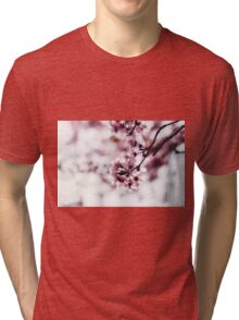 Blooming Tree With Pink Flowers Tri-blend T-Shirt