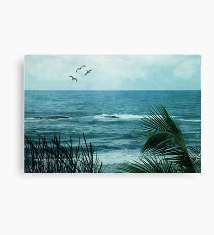 More to the Story  Canvas Print