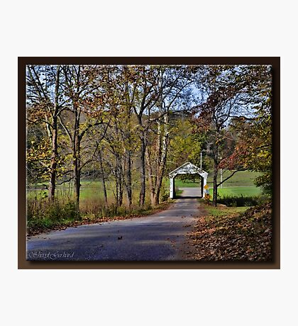 Phillips Bridge Road Photographic Print
