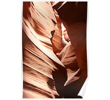 Nature Carving Poster