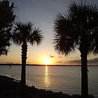 Florida Sunset by Barbny