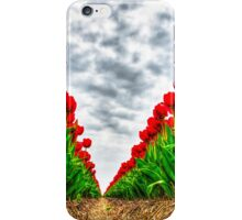 Dutch Tulips part 5 iPhone Case/Skin
