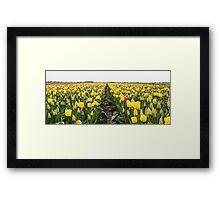 Dutch Tulips part 6 Framed Print