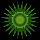 Agave Star by Michael Matthews