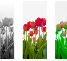 Dutch Tulips part 9 Sticker