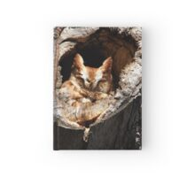 Afternoon nap Hardcover Journal
