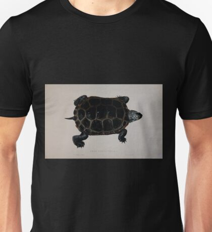 Tortoises terrapins and turtles drawn from life by James de Carle Sowerby and Edward Lear 034 Unisex T-Shirt