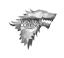 The Winter is Coming- Stark  by stylishtech
