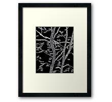 ink forest Framed Print