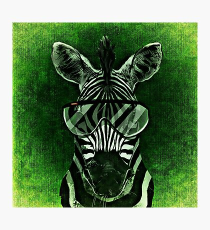 Cool Zebra Photographic Print