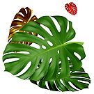 PHILODENDRON #4 by Thomas Barker-Detwiler