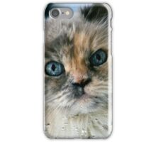 Rainy Day Willow iPhone Case/Skin