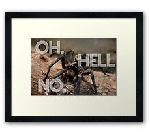 Fear of Spiders Funny Photography Framed Print