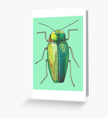 Green insect drawing Greeting Card