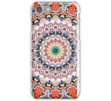 Ornate Symmetry of Colors iPhone Case/Skin