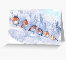 Round Robin - (Card) Greeting Card