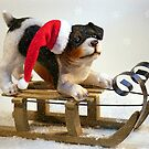 Puppy on a Sled by Susan S. Kline