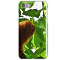 Let me sing you my song iPhone Case/Skin