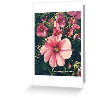 Pretty in Pink Florals Greeting Card