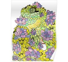 Hairy Bush Viper with Succulents Poster