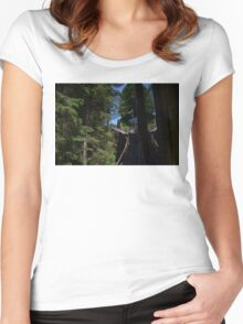 Swiss Funicular Railway Women's Fitted Scoop T-Shirt