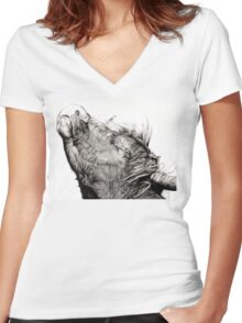 Highland Bull Women's Fitted V-Neck T-Shirt