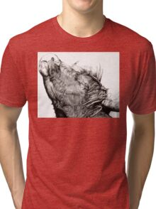 Highland Bull Tri-blend T-Shirt