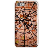 Spiders Web iPhone Case/Skin