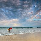 The Board Meeting - Gold Coast Qld Australia by Beth  Wode