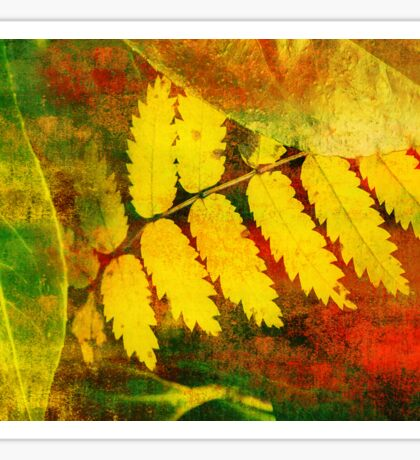 Leaf Abstract Sticker