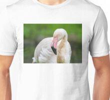 Pink Beak T-Shirt
