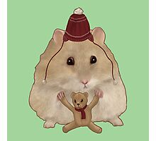 Hamster with a teddy bear Photographic Print
