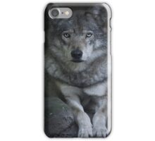 Canis Lupus...AKA Wolf  iPhone Case/Skin