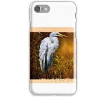 Great Egret ~ The Russian Olive Tree iPhone Case/Skin