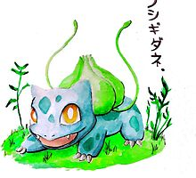 Bulbasaur 001 by Sam Johnson