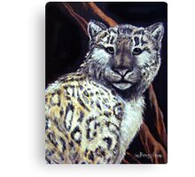 """Snow Leopard"" Canvas Print"