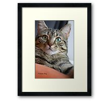 You Have My Attention Framed Print