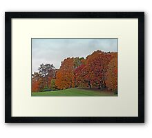 Rolling Hills Of Wisconsin In Autumn Framed Print
