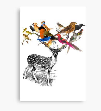 DEER BIRDY Metal Print