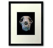 bobcat skull Framed Print