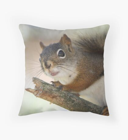 My diving board Throw Pillow