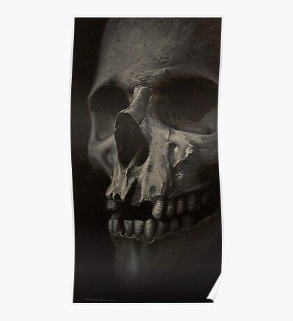 grey realistic skull Poster