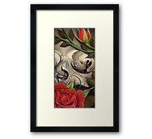 skull w roses Framed Print