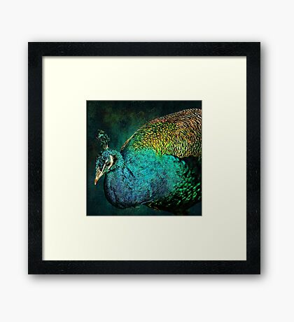 The Bejeweled Peacock Framed Print