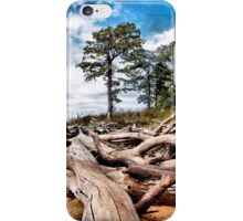Shoreline Sculptures iPhone Case/Skin