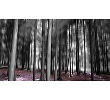 Forest Motion Blur Abstract Photographic Print
