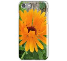 flowers vegetable spring garden iPhone Case/Skin